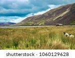scotland landscape. wooden hat... | Shutterstock . vector #1060129628