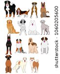 group of large and middle dogs...   Shutterstock .eps vector #1060205600
