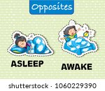 opposite words for asleep and... | Shutterstock .eps vector #1060229390