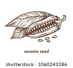 sesame seeds from ripe plant... | Shutterstock .eps vector #1060243286