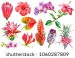 set tropical plants  flora... | Shutterstock . vector #1060287809