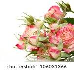 fine roses | Shutterstock . vector #106031366