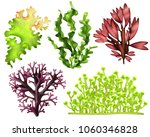 set of realistic sea weeds... | Shutterstock .eps vector #1060346828