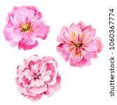 watercolor flowers. floral... | Shutterstock . vector #1060367774