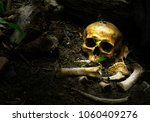 Skull And Bones Buried In The...