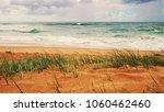 sand beach with green grass on... | Shutterstock . vector #1060462460