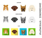 muzzle of different breeds of... | Shutterstock .eps vector #1060482440