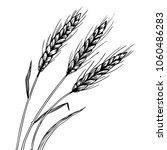 wheat ear spikelet engraving...   Shutterstock .eps vector #1060486283
