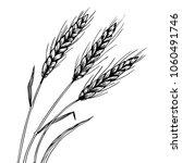 wheat ear spikelet engraving... | Shutterstock . vector #1060491746
