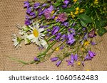 hello summer. beautiful bouquet ... | Shutterstock . vector #1060562483