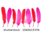 dark pink and chili red... | Shutterstock . vector #1060615196