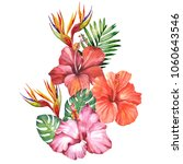 beautiful bouquet of tropical... | Shutterstock . vector #1060643546