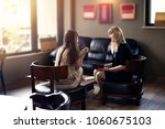 psycologist consulting woman... | Shutterstock . vector #1060675103