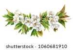 isolated flowering cherry... | Shutterstock . vector #1060681910