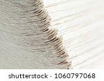 paper towels pile | Shutterstock . vector #1060797068