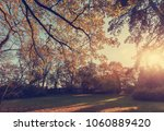 awesome autumn background.... | Shutterstock . vector #1060889420