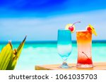two delicious fruit cocktails... | Shutterstock . vector #1061035703