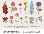 big set flowers. victorian... | Shutterstock .eps vector #1061089136
