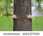 kid hide body behind trunk with ...   Shutterstock . vector #1061227010