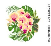bouquet with tropical flowers ... | Shutterstock .eps vector #1061236214