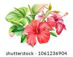 bouquet of flowers  hibiscus... | Shutterstock . vector #1061236904