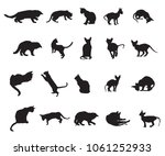 Stock vector set of different breeds cats silhouettes sitting standing lying playing in black color 1061252933