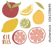 doodle citrus fruits isolated... | Shutterstock .eps vector #1061258690