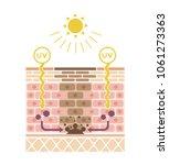 mechanism of skin pigmentation  ... | Shutterstock .eps vector #1061273363