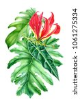 bouquet of flowers  leaves of... | Shutterstock . vector #1061275334