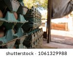 production of eggs with hens... | Shutterstock . vector #1061329988