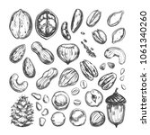 nuts and seeds collection.... | Shutterstock .eps vector #1061340260
