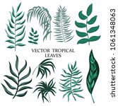 set of vector botanical... | Shutterstock .eps vector #1061348063