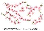 pink sakura branches set vector ... | Shutterstock .eps vector #1061399513