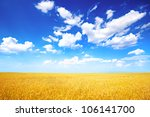 wheat field and blue sky with... | Shutterstock . vector #106141700