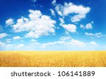 wheat field and blue sky with... | Shutterstock . vector #106141889