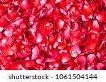 rose petals background   Shutterstock . vector #1061504144