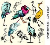 a set of 5 vector illustrations ... | Shutterstock .eps vector #1061569