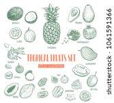 hand drawn tropical fruits set. ... | Shutterstock .eps vector #1061591366