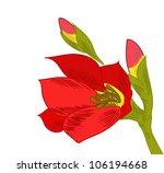 red flower vector handpainted | Shutterstock .eps vector #106194668