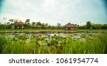 pond and huts in vietnamese... | Shutterstock . vector #1061954774