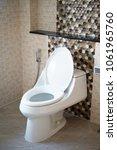toilet bowl and bidet shower ... | Shutterstock . vector #1061965760