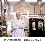 young beautiful proud female... | Shutterstock . vector #1061967626
