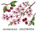 watercolor cherry blossom set ... | Shutterstock . vector #1061984954
