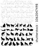 vector  isolated  silhouette of ... | Shutterstock .eps vector #1062047498