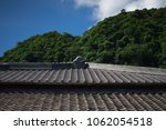 Small photo of An old Japanese style garble roof