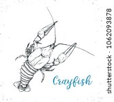 crayfish sketch icon isolated... | Shutterstock .eps vector #1062093878