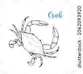 crab sketch icon isolated on... | Shutterstock .eps vector #1062093920