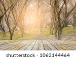 forest with plank foreground | Shutterstock . vector #1062144464