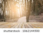 forest with plank foreground | Shutterstock . vector #1062144500