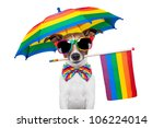 Dog Wearing Rainbow Glasses An...